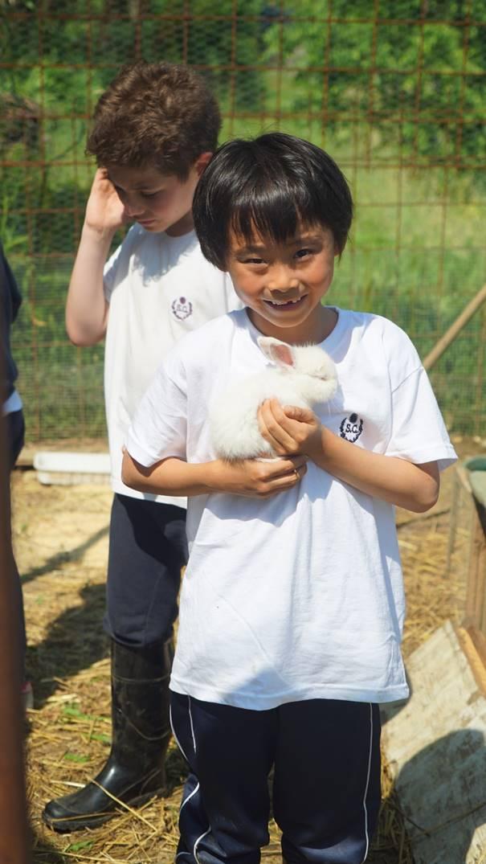 ragazzo con coniglio