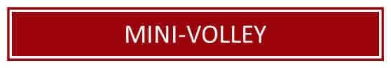 Mini-Volley